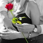 red-rose-1461043_1920