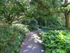 woodlandpathwayLongwood4June2013