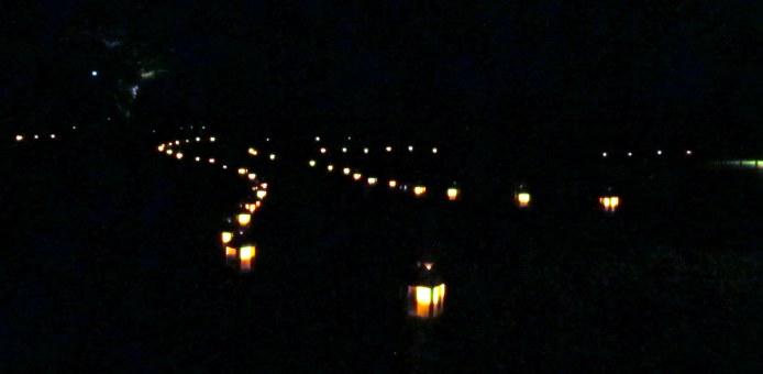 lanternsnearLegacytreeNightscapeLongwoodGardens8Aug2015