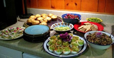 foodatpermaculturemeetingatCandiss3June2015