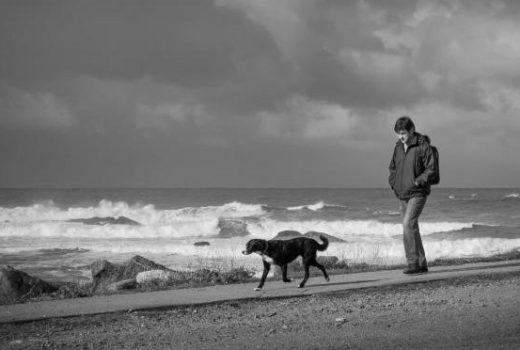 'La felicidad de los perros' do vigués David Hernández en aberto