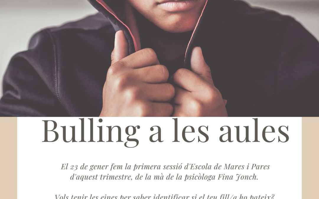 Xerrada sobre bullying a pares i mares
