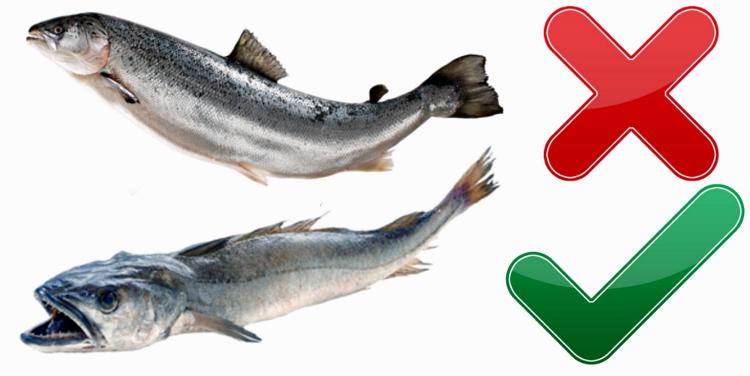 pescado_m