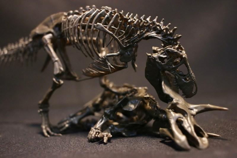 Tyrannosaurus Rex / Triceratops
