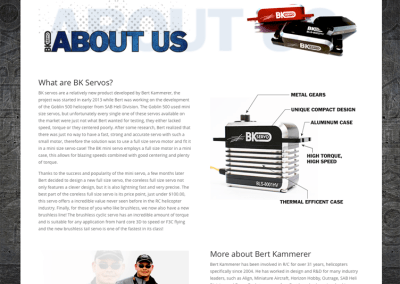 BK Servo Web Site Design