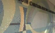 SCEG mosaic 1 042515