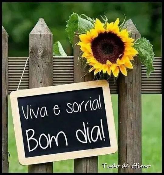 Viva e sorria! Bom dia
