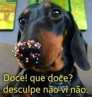 Cachorro doce