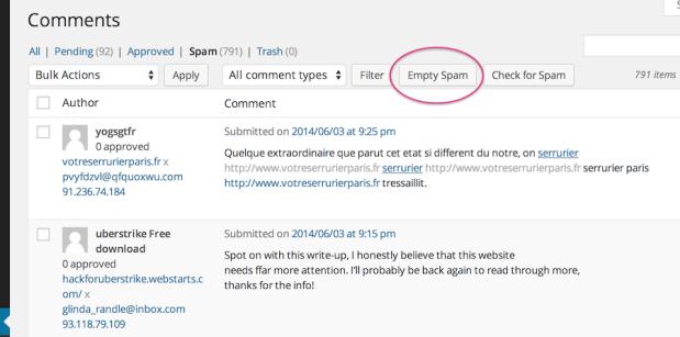 empty-spam