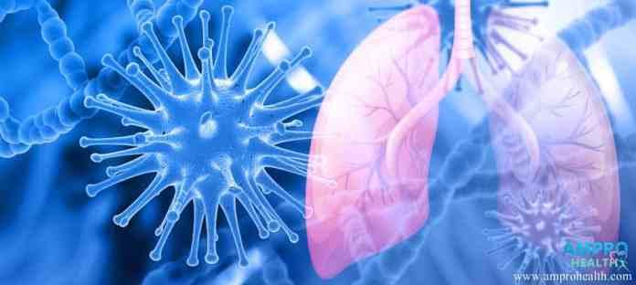 โรคมะเร็งที่พบบ่อย 6 อันดับแรกของโลก