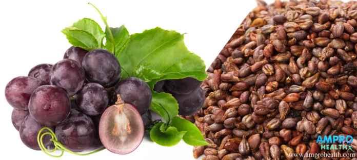 น้ำมันเมล็ดองุ่นสกัดเย็น ( Cold pressed grape seed oil )