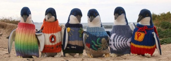 penguins-in-sweaters