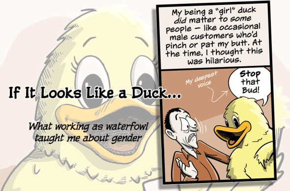 duck-comic-teaser-image