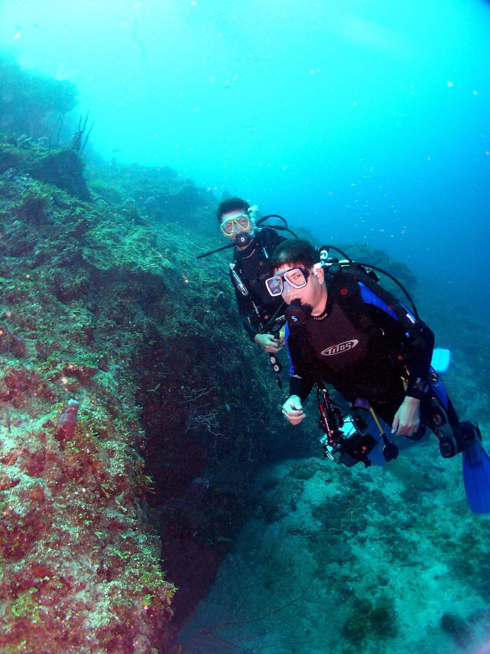 Buceo en Arrecifes de Coral en la costa de Puerto Cortés.