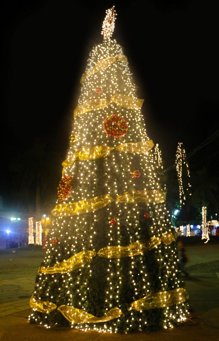 Parque Central - Navidad Dorada