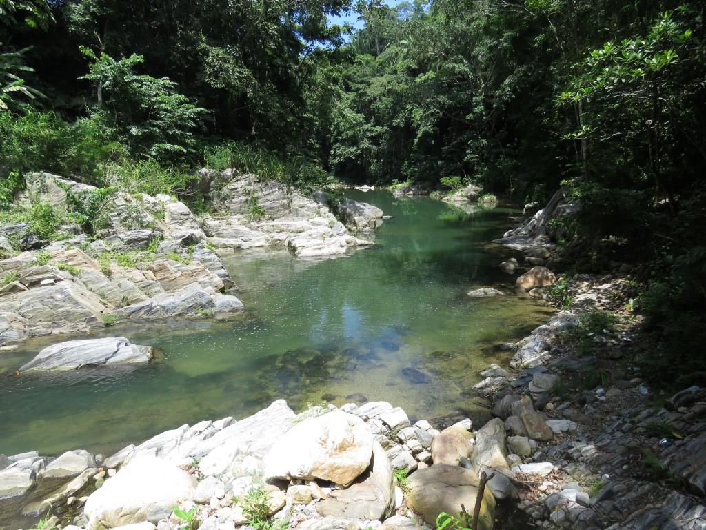Vista Panorámica del recurso hidrìco y el bosque de Galería existente en el sector Ecoturistico de Puerto Cortes.