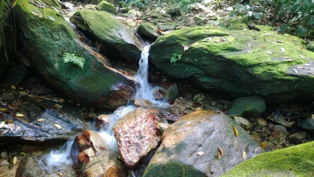 Recurso Hídrico existente en el sector Ecoturistico de Puerto Cortes.