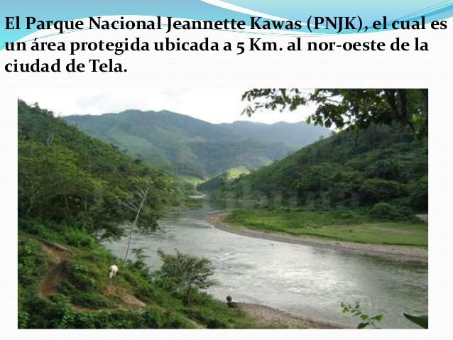 jeannette-kawas-honduras-14-638