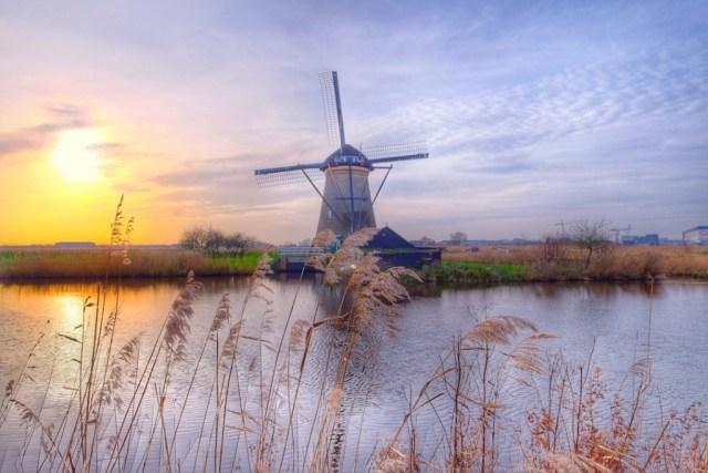 Amsterdam Kinderdijk 8