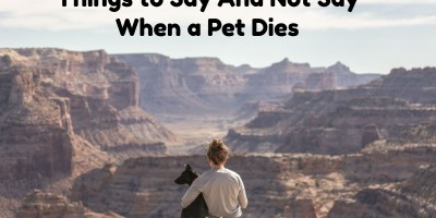 things to say when pets die