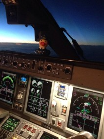 Pilot Rubber Duck