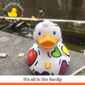 A day into town with duck family @ Bloemgracht, Amsterdam