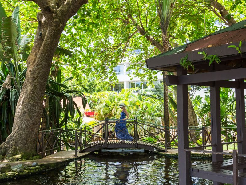 Lush gardens in San Juan, Puerto Rico (308939)