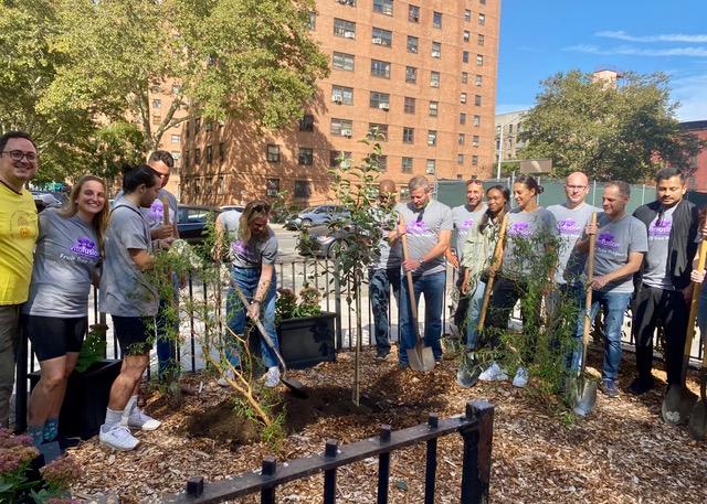 The Fruit Tree Planting Foundation (309237)