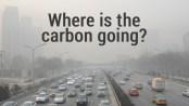 carbonfoto