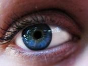 oogfoto