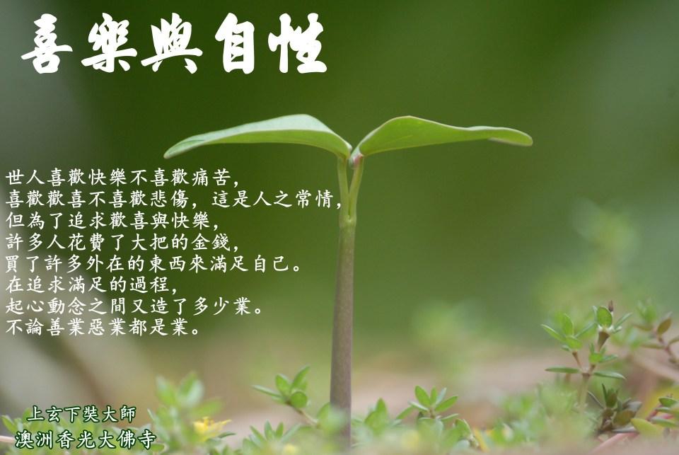 plant-951135.jpg