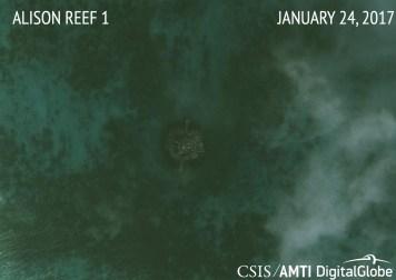 Alison Reef 1 1.24.17