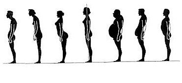 Course: The Posture Project for the 50+ Population with