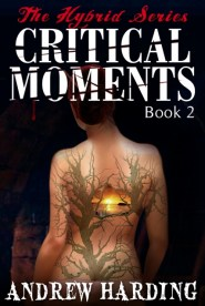 Andrew Harding - Critical Moments - Book 2 Cover