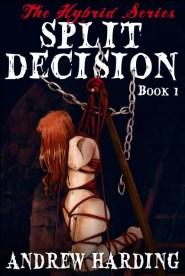 Andrew Harding - Split Decision - Book 1 Cover