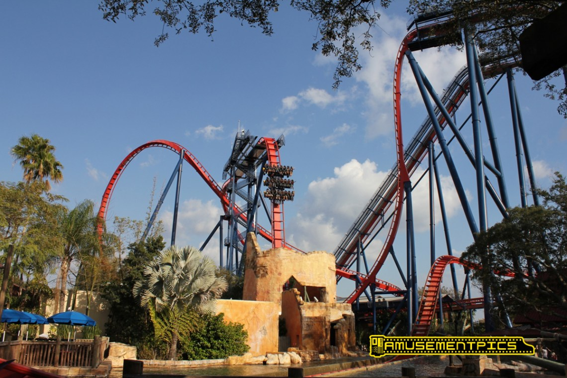 Image Result For Busch Gardens Tampa