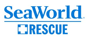 SW Rescue logo blue