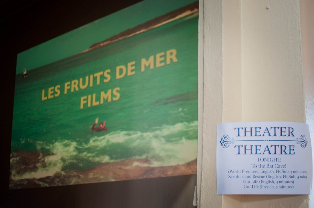 Four short films produced by Les Fruits de Mer about Caribbean wildlife, from cave-dwelling bats to deep-sea creatures, are now playing at the Amuseum Naturalis theater.