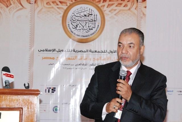 محمد البلتاجى