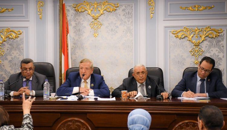 وزارة التخطيط خلال اجتماع لجنة الخطة والموازنة بالبرلمان