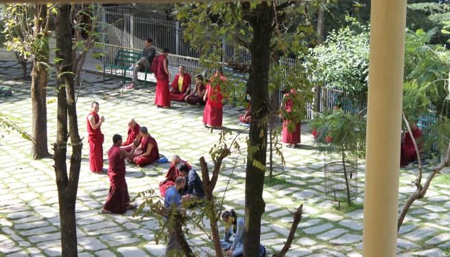 Debating monks, Namgyal Gompa (monastary) courtyard
