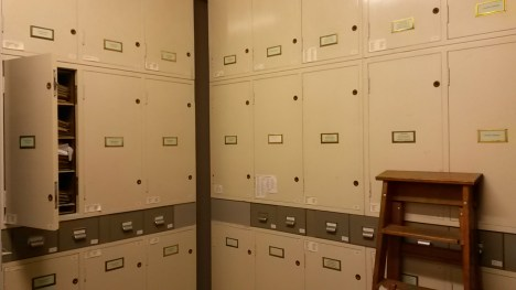 The Herbarium cupboards - it's like a room at Hogwarts!