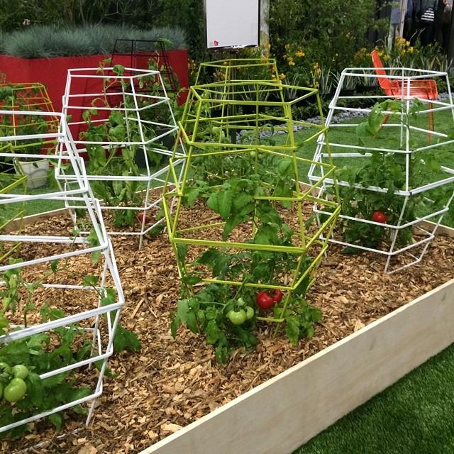Terra Trellis Tomato Cages