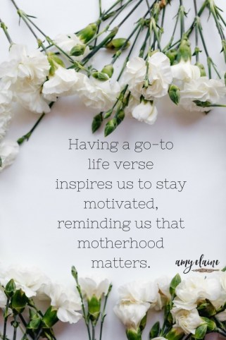 life verse-life-verse-motivation-inspiration
