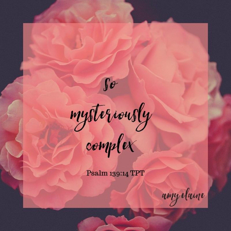 Mysteriously complex on purpose