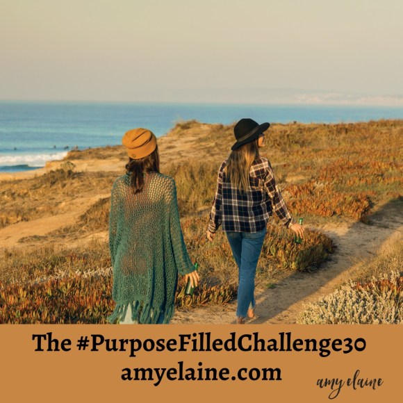 purpose filled challenge