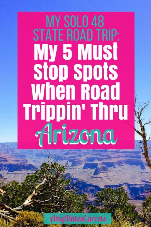During my solo 48 State road trip I knew there were 5 stops I HAD to make when driving thru Arizona...here they are: