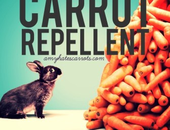 Carrot Repellent Guide