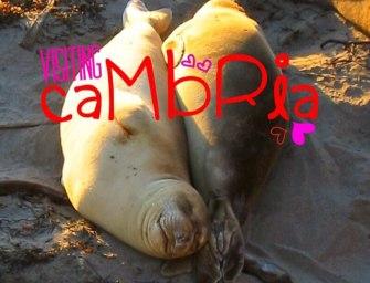 Visiting Cambria