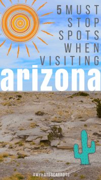Make sure to stop at these 5 must see stops on your next road trip to Arizona.